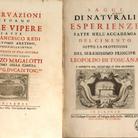 Redi e Magalotti: rigore scientifico e piacevolezza della lingua